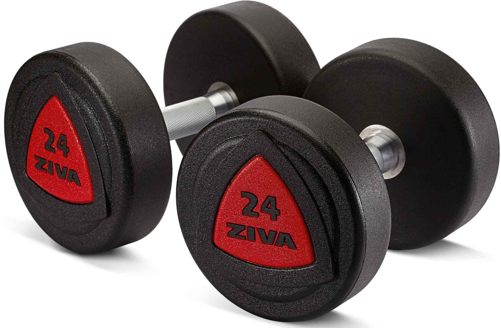 Gewichte Fitness Studio Krafttraining Rehe Kurzhantel Kunst 2 Hanteln 1 Paar